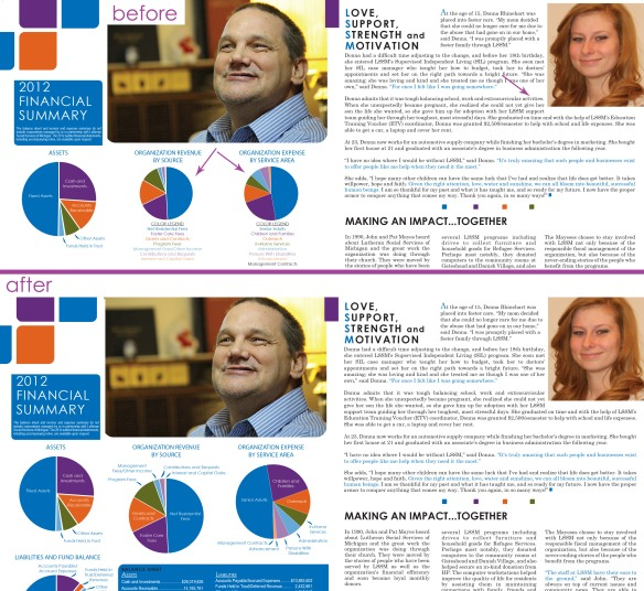 updated 2012 annual report